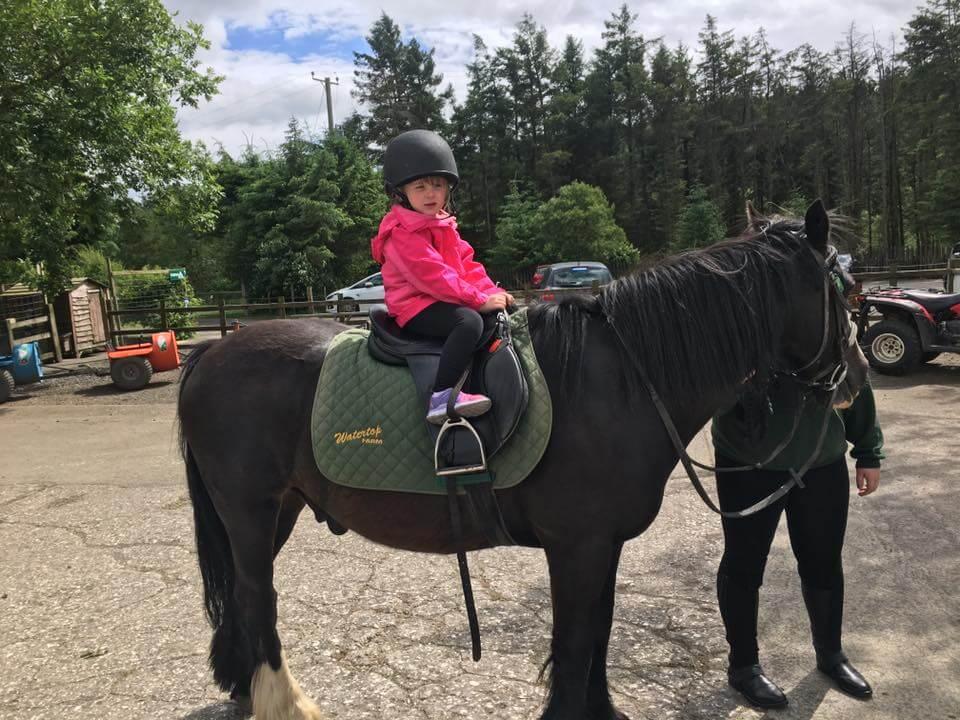 Megan horse