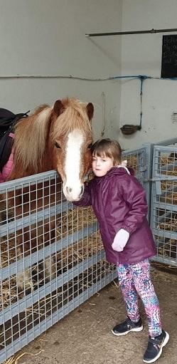 The Ark Open Farm Megan favourite horse