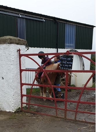 The Ark Open Farm Pony Trek
